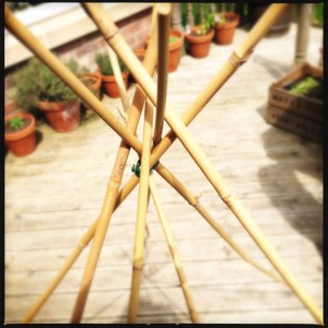 Make a wigwam shape
