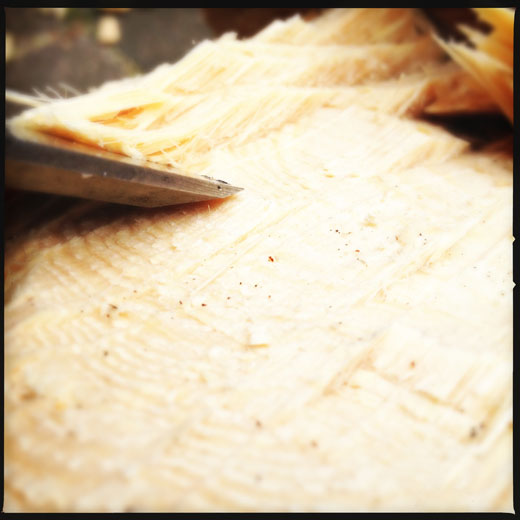 How to use a chisel - use the beveled edge down