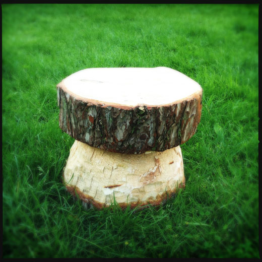 The finished toadstool chair