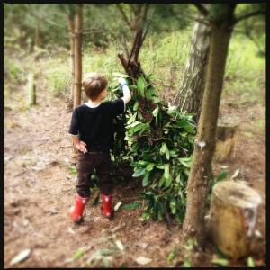 How to make a simple den