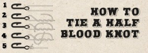 How to tie a half blood-knot