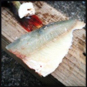 A perch fillet